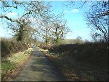 SJ6836 : Moss Lane, Betton by Simon Huguet