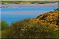 B7923 : Bunbeg Harbour Road - Coastal scenery by Joseph Mischyshyn