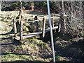 NZ0931 : Little bridge at Bedburn by Ann Clare