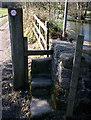 NZ1031 : Stone step stile by Bedburn pond by Ann Clare