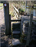 NZ1031 : Stone step stile by Bedburn pond by Ann Clare
