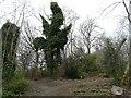 SJ8895 : Brookfield Burial Ground by Gerald England