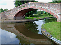 SJ9922 : Bridge No 109, Staffordshire and Worcestershire Canal , Great Haywood by Roger  Kidd