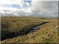 SN8673 : Lower slopes of Esgair Dderwen by Nigel Brown