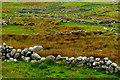 B8131 : Brinlack - Stone walls by Joseph Mischyshyn