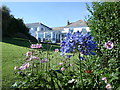 SW8836 : Driftwood Hotel - back garden by Ian Cunliffe