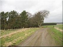NS9740 : Farm road, Hillhead by Richard Webb