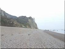SY2187 : Hooken Landslip from Branscombe Beach by John M