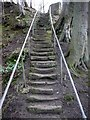 NZ1171 : Steps on footpath south of River Pont footbridge by Andrew Curtis
