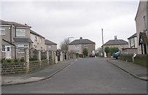 SE1734 : Beech Crescent - Beech Grove by Betty Longbottom