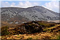 B9827 : Road from Falcarragh SE to R251 -Muckish Mountains by Joseph Mischyshyn