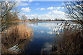 TL4284 : Lake at Block Fen by Bob Jones
