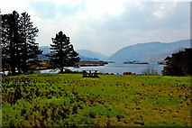 C0323 : Glenveagh National Park - View from visitor centre by Joseph Mischyshyn