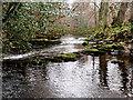 NU1228 : Water gates on the Waren Burn by Alfie Tait