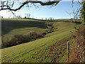 SX8854 : Head of valley by Combe Lane by Derek Harper