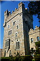 C0220 : Glenveagh National Park - Castle Residence by Joseph Mischyshyn