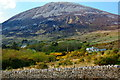 B9219 : Dunlewy - Homes at base of Mount Errigal by Joseph Mischyshyn