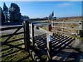 SO2386 : Cattle grid at the junction by Dave Croker