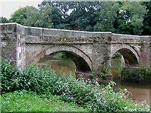 SJ9922 : Essex Bridge (detail), Great Haywood, Staffordshire by Roger  Kidd
