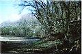 SU3075 : Membury Hillfort by D Gore