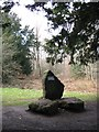 SP8909 : Monument at the Chiltern Summit, Wendover Woods by Chris Reynolds