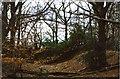 SU5172 : Grimsbury Castle – Iron-Age Hillfort by D Gore