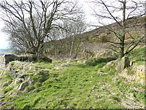 SE0028 : Site of Rock, Wadsworth by Humphrey Bolton