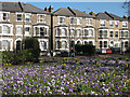 TQ4077 : Spring flowers in Batley Park by Stephen Craven