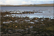 HP6309 : Low tide at Buness, Baltasound by Mike Pennington