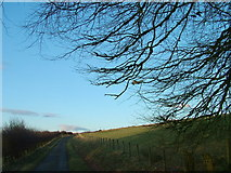 NY5676 : The road by Park Head by David Brown