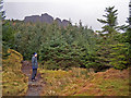 NG5053 : Path to The Storr by Richard Dorrell