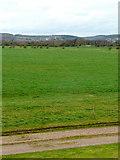 SO6301 : New Grounds/Lydney Marsh by Jonathan Billinger