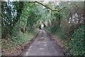 SU7431 : Lane West of Empshott Green by N Chadwick