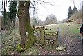 SU7530 : Stile East of Mill Lane by N Chadwick