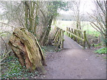TQ1463 : Footbridge by Arbrook Common by Colin Smith