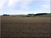 NT9911 : Ploughed field west of Prendwick by Andrew Curtis