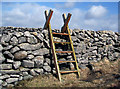 J2922 : Stile over the Mourne Wall, Slievenaglogh by Rossographer