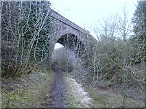 SO9700 : Skew bridge over the Thames and Severn Canal by David Stowell