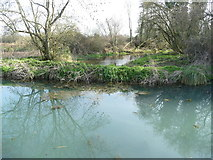 SU7251 : The River Whitewater passing under the Basingstoke Canal by Diane Sambrook