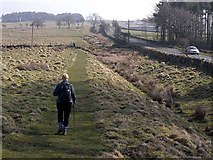 NY9569 : Hadrian's Wall National  Trail near Greenfield by Oliver Dixon