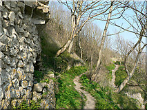 SS8872 : Clifftop footpath to Trwyn y Witch, Dunraven. by Mick Lobb