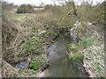 SU8971 : The Cut at Brockhill Bridge by Nigel Cox
