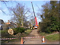 TM3569 : Tree Surgery in The Causeway, Peasenhall by Adrian Cable