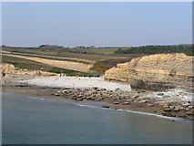 SS8872 : 'Beach' and cliffs, Dunraven Bay. by Mick Lobb