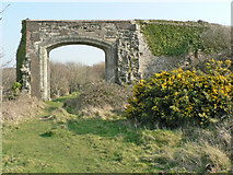 SS8872 : Archway, Dunraven Castle remains. by Mick Lobb
