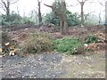 SP0584 : Garden waste and composting site by David Smith