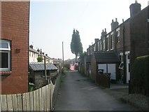 SE5023 : Gordon Terrace - Womersley Road by Betty Longbottom