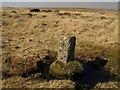 SX6770 : Boundary stone, Holne Moor by Derek Harper