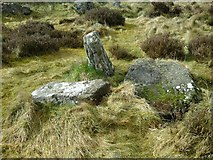 NJ9451 : Damage to a Neolithic Monument by Ballogie