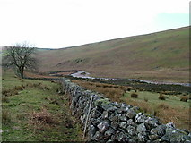 NY0709 : Worm Gill by David Brown